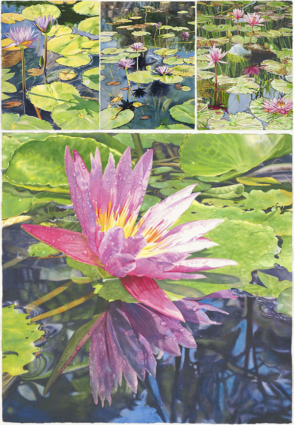 lily paintings